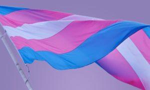 Grupos de diversidade da AIG Brasil focará na inclusão de transgêneros