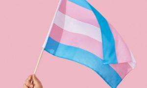 CineSesc terá programação especial para o Dia Nacional da Visibilidade Trans