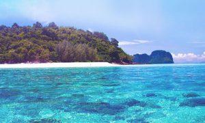 H&H Festival Virtual terá estreia em ilha paradisíaca