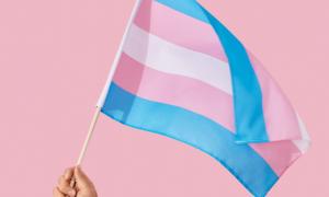Livro debate transexualidade e perversão