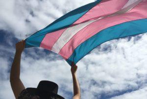 Os desafios do turista transgênero