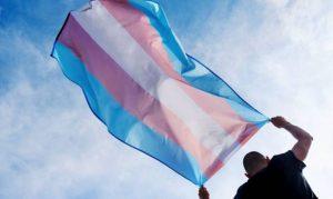 Museu da Diversidade Sexual promove bate papo online sobre o Mês da Visibilidade Trans